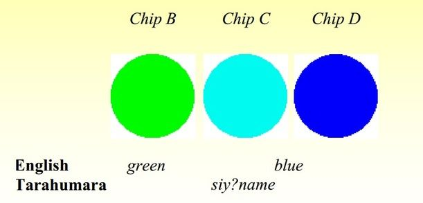 青色在日語裡是代表藍色,但在說紅綠燈時卻是指綠燈,而不是藍燈。(來源 https://thinkingthroughlanguage.weebly.com/theories-of-language.html)