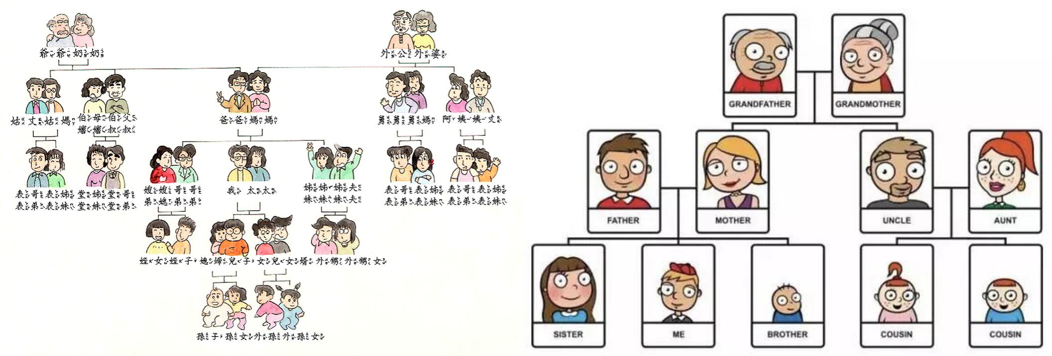 伯叔舅姑姨 vs. uncle & aunt